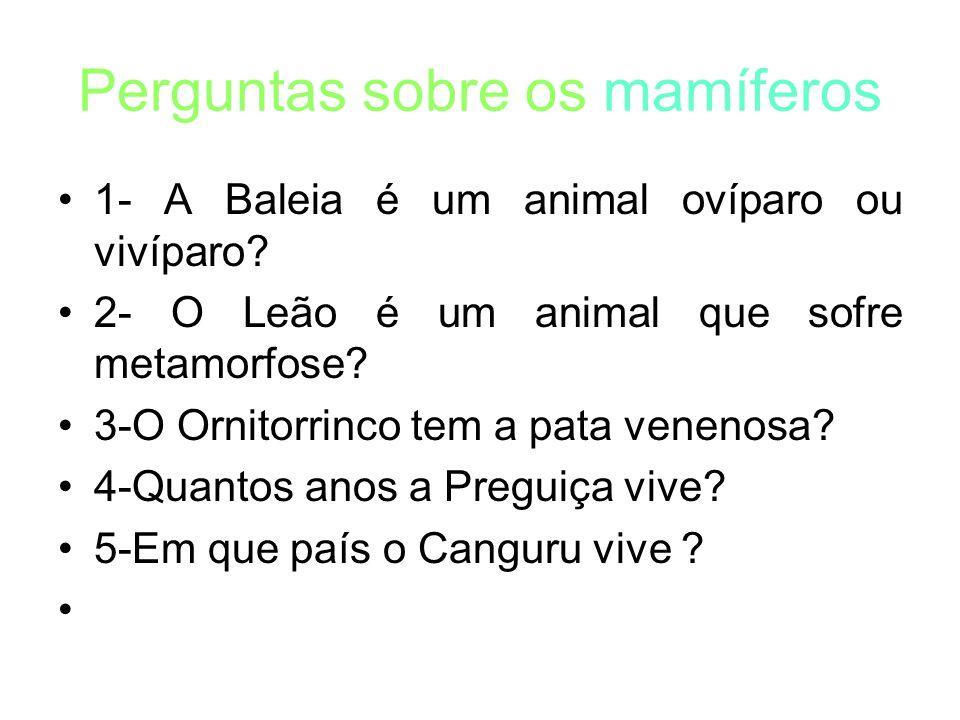 Perguntas sobre os mamíferos