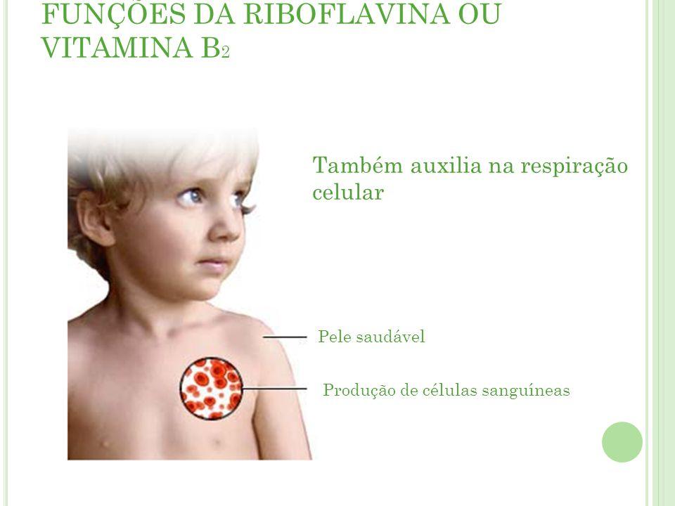 FUNÇÕES DA RIBOFLAVINA OU VITAMINA B2
