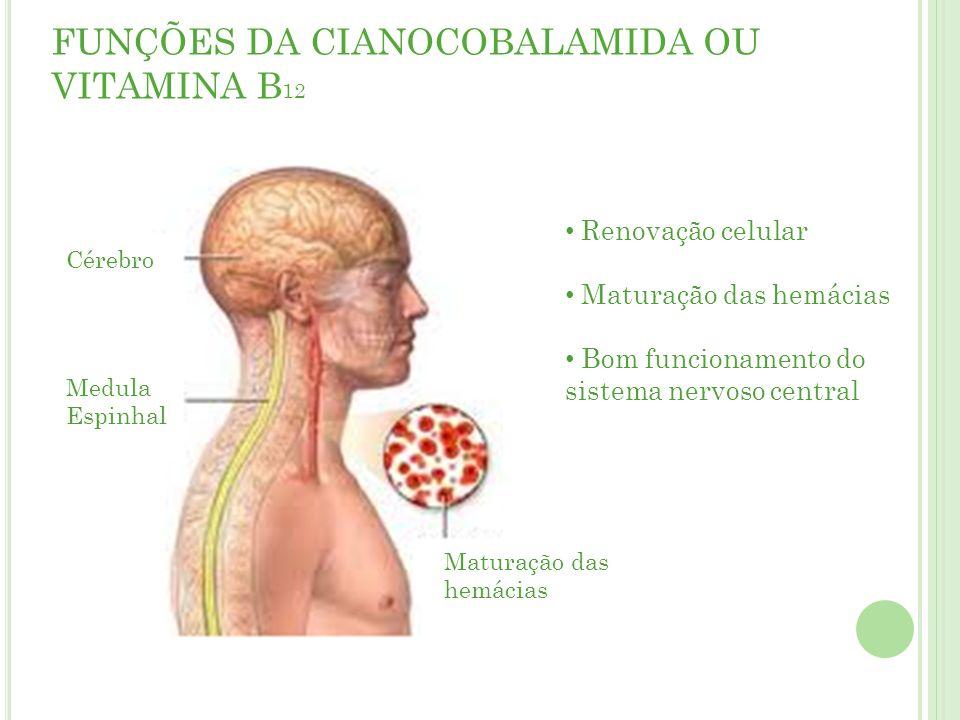 FUNÇÕES DA CIANOCOBALAMIDA OU VITAMINA B12