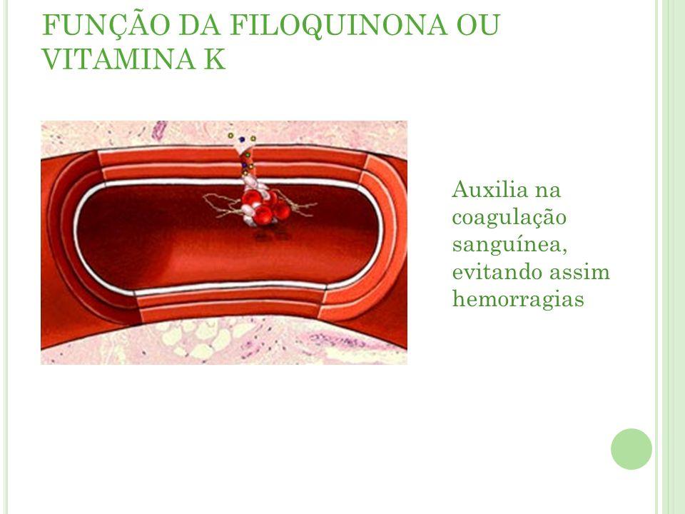 FUNÇÃO DA FILOQUINONA OU VITAMINA K