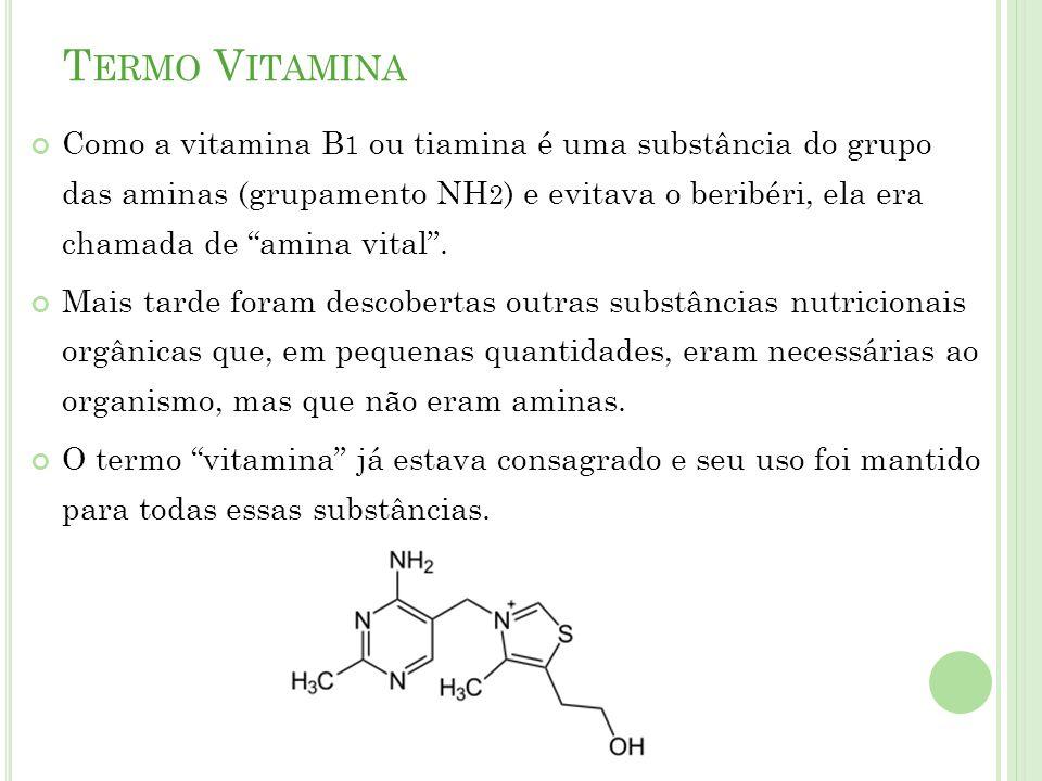 Termo Vitamina