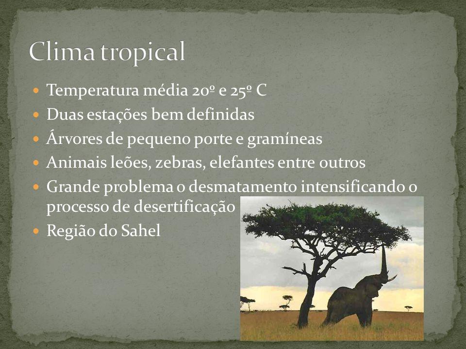 Clima tropical Temperatura média 20º e 25º C