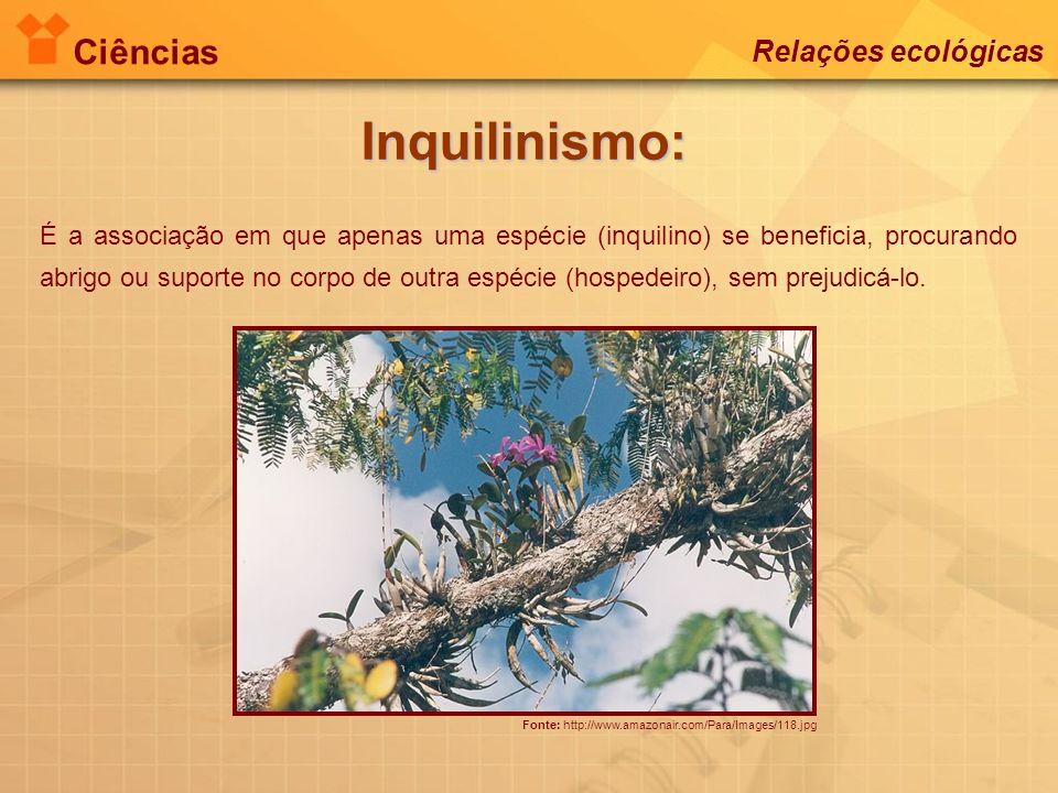 Inquilinismo: Ciências Relações ecológicas