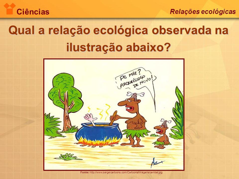 Qual a relação ecológica observada na ilustração abaixo