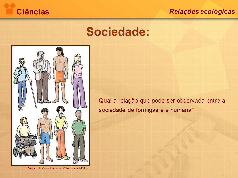 Sociedade: Ciências Relações ecológicas