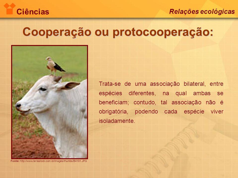 Cooperação ou protocooperação: