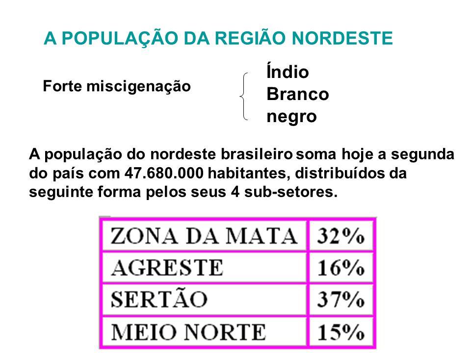 A POPULAÇÃO DA REGIÃO NORDESTE