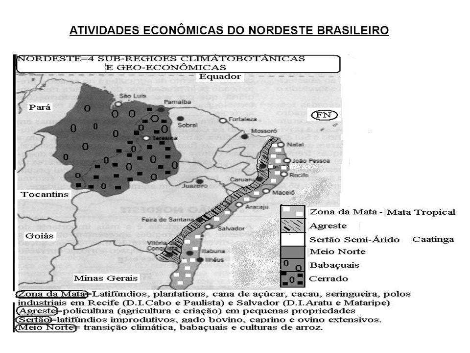 ATIVIDADES ECONÔMICAS DO NORDESTE BRASILEIRO