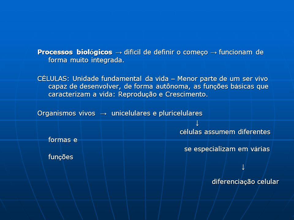 Processos biológicos → difícil de definir o começo → funcionam de forma muito integrada.