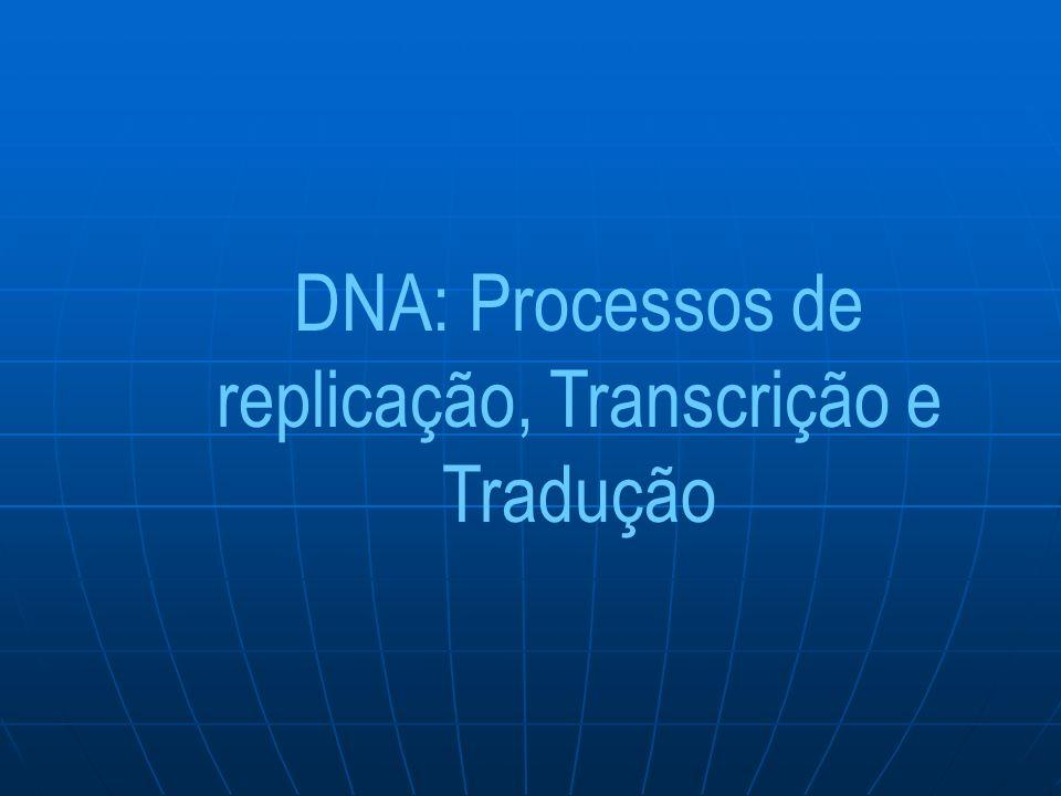DNA: Processos de replicação, Transcrição e Tradução
