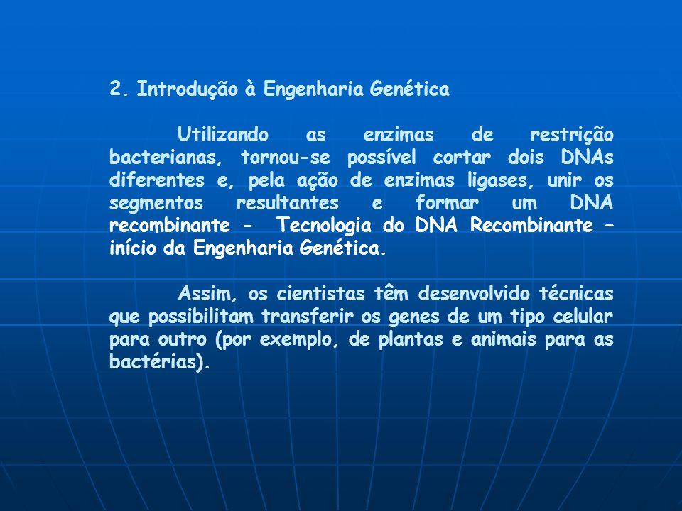 2. Introdução à Engenharia Genética