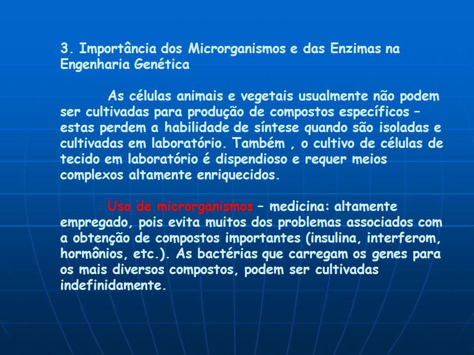 3. Importância dos Microrganismos e das Enzimas na Engenharia Genética