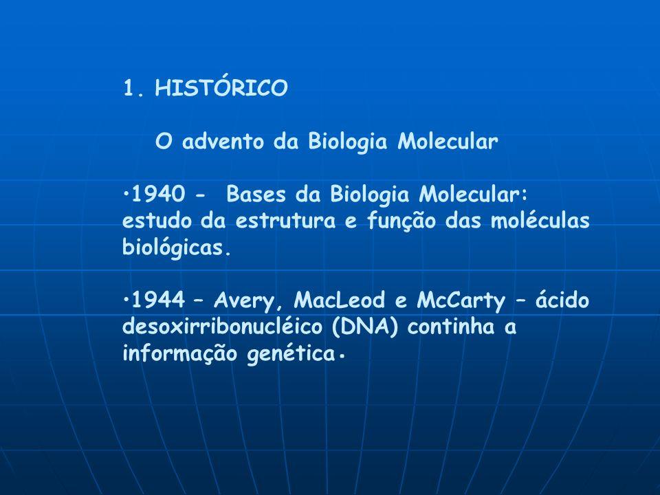 1. HISTÓRICO O advento da Biologia Molecular. 1940 - Bases da Biologia Molecular: estudo da estrutura e função das moléculas biológicas.