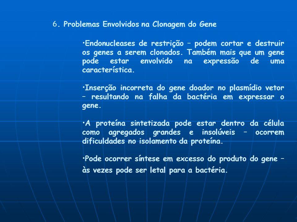 6. Problemas Envolvidos na Clonagem do Gene