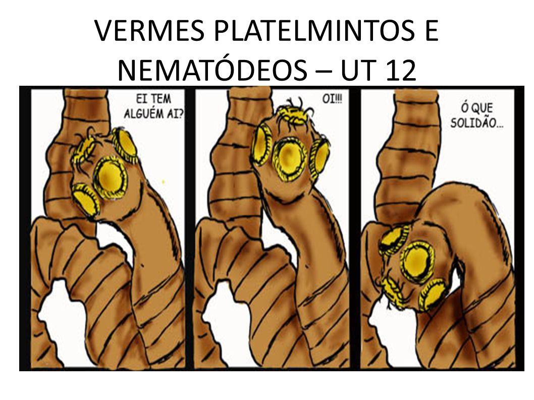 VERMES PLATELMINTOS E NEMATÓDEOS – UT 12
