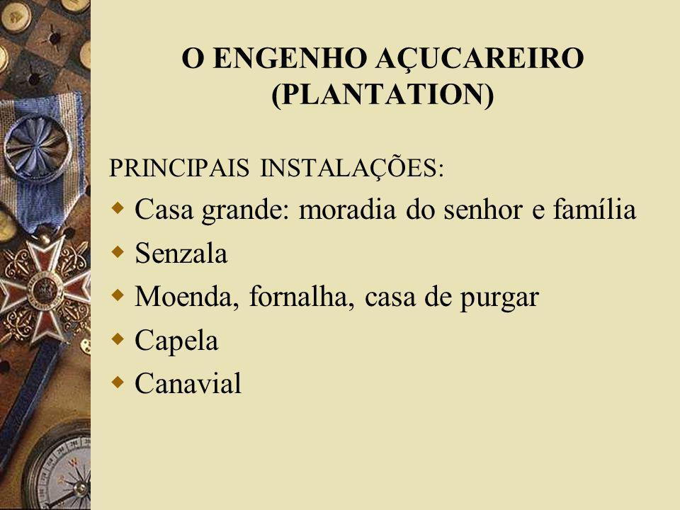 O ENGENHO AÇUCAREIRO (PLANTATION)