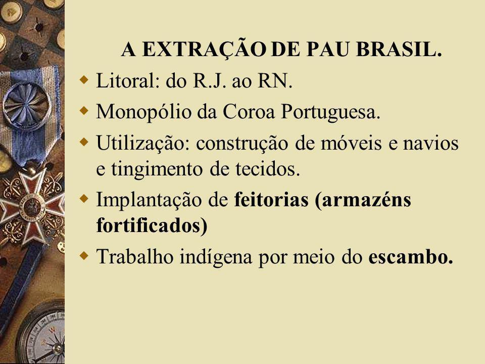 A EXTRAÇÃO DE PAU BRASIL.