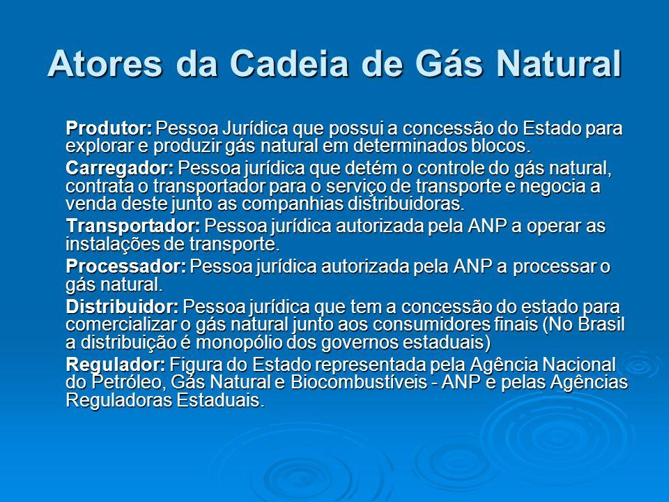 Atores da Cadeia de Gás Natural