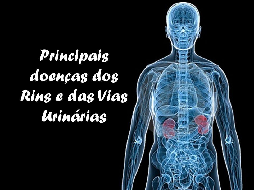 Principais doenças dos Rins e das Vias Urinárias