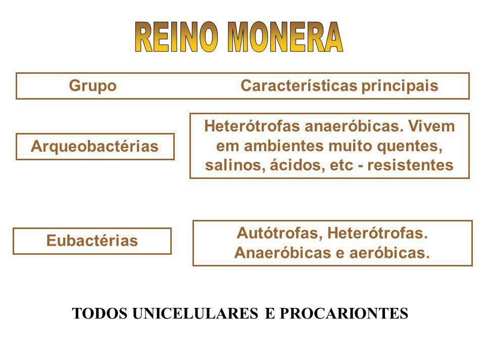 Autótrofas, Heterótrofas. Anaeróbicas e aeróbicas.