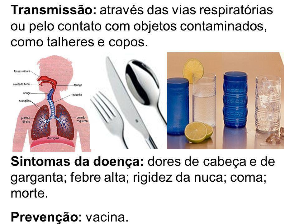 Transmissão: através das vias respiratórias ou pelo contato com objetos contaminados, como talheres e copos.