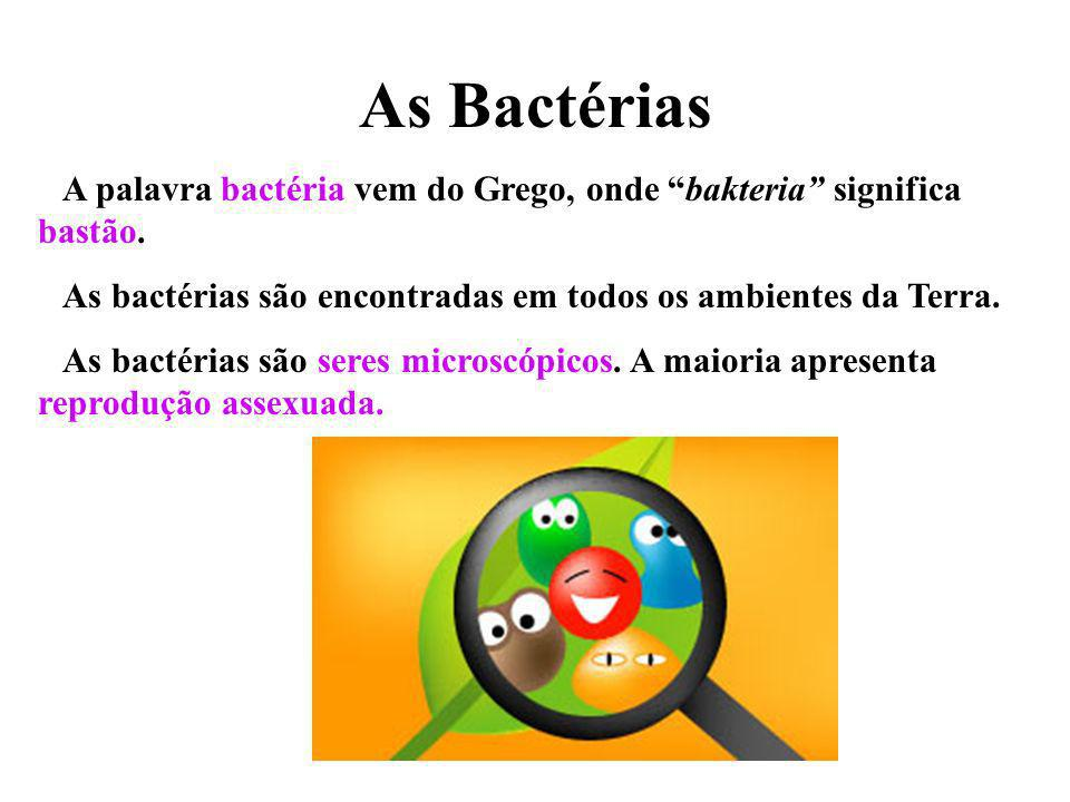 As Bactérias A palavra bactéria vem do Grego, onde bakteria significa bastão. As bactérias são encontradas em todos os ambientes da Terra.