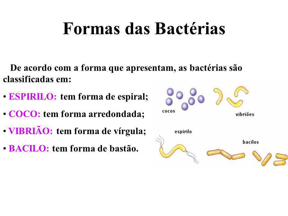 Formas das Bactérias De acordo com a forma que apresentam, as bactérias são classificadas em: ESPIRILO: tem forma de espiral;