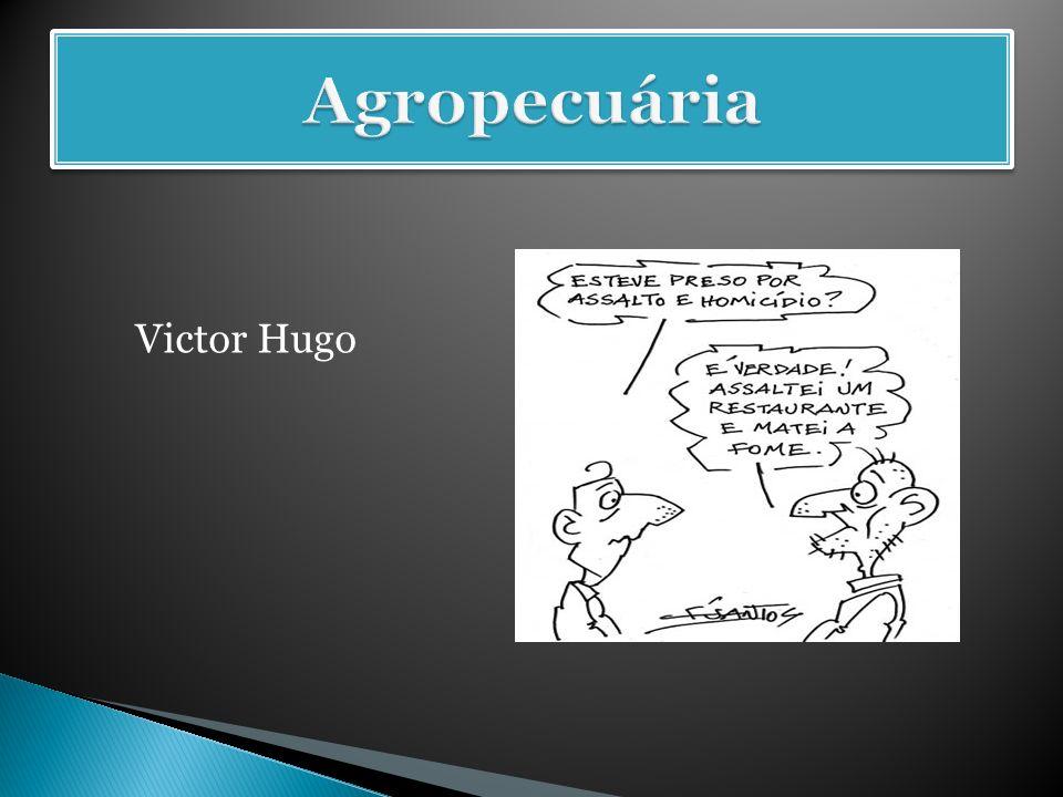 Agropecuária Victor Hugo