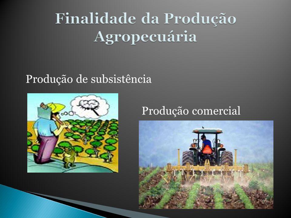 Finalidade da Produção Agropecuária