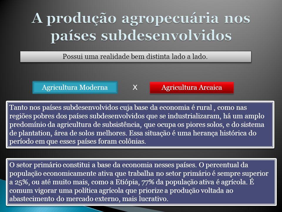 A produção agropecuária nos países subdesenvolvidos