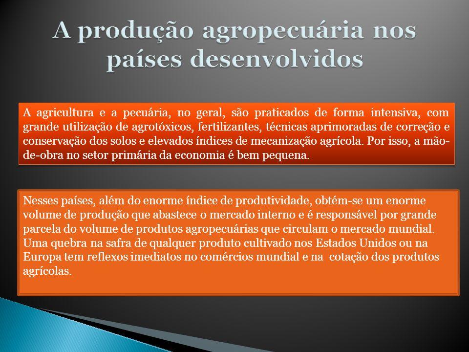 A produção agropecuária nos países desenvolvidos