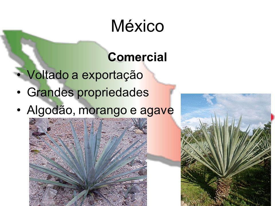 México Comercial Voltado a exportação Grandes propriedades