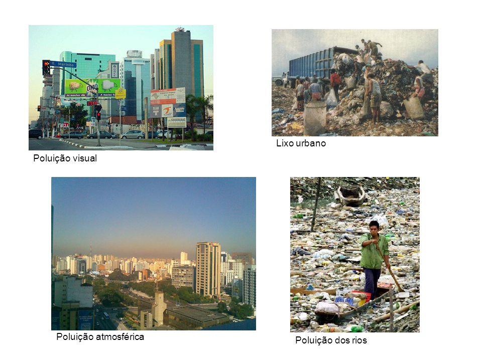 Poluição visual Lixo urbano Poluição atmosférica Poluição dos rios