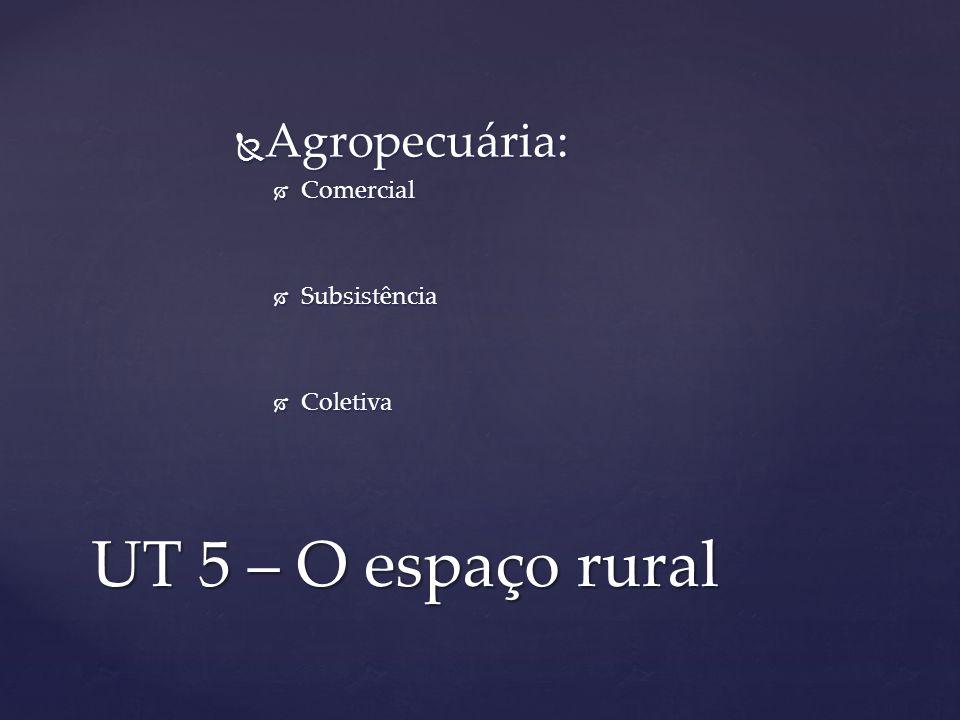 Agropecuária: Comercial Subsistência Coletiva UT 5 – O espaço rural
