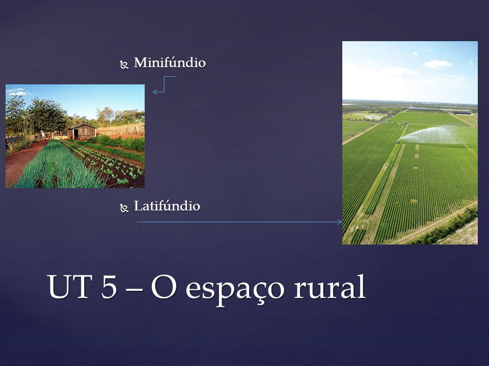 Minifúndio Latifúndio UT 5 – O espaço rural