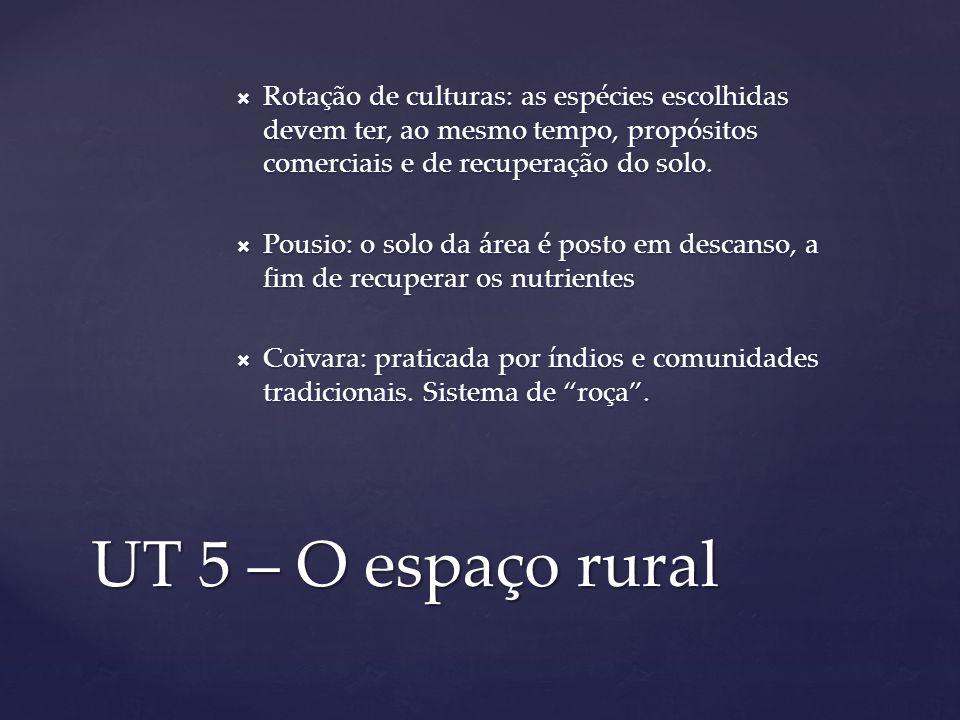 Rotação de culturas: as espécies escolhidas devem ter, ao mesmo tempo, propósitos comerciais e de recuperação do solo.