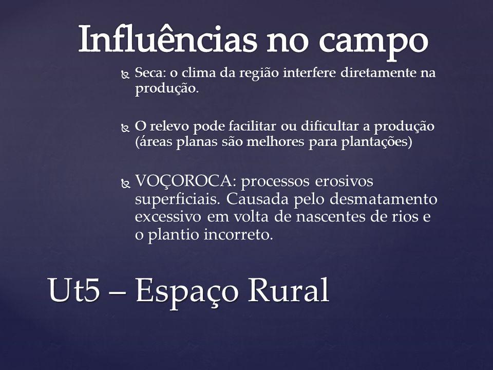 Influências no campo Ut5 – Espaço Rural