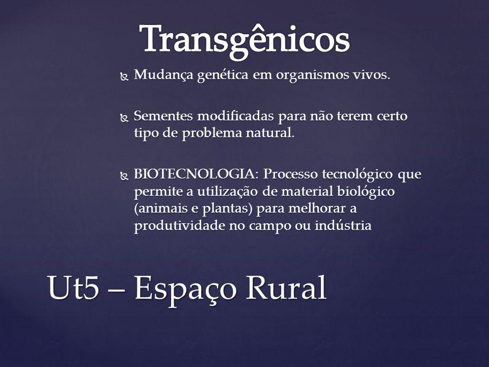 Transgênicos Ut5 – Espaço Rural Mudança genética em organismos vivos.