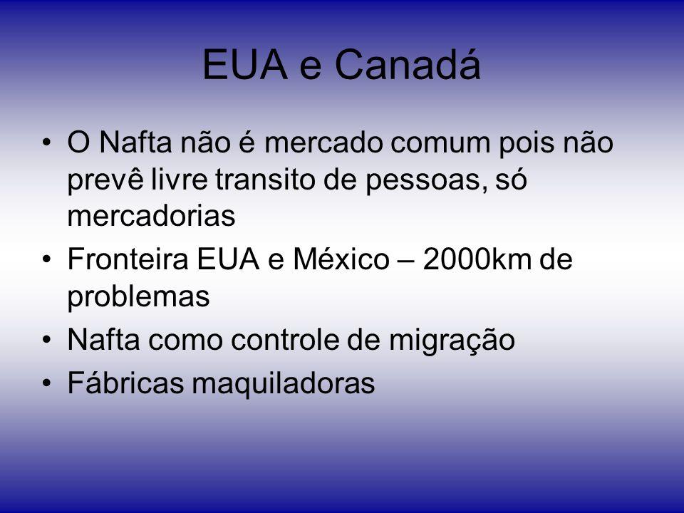 EUA e Canadá O Nafta não é mercado comum pois não prevê livre transito de pessoas, só mercadorias. Fronteira EUA e México – 2000km de problemas.