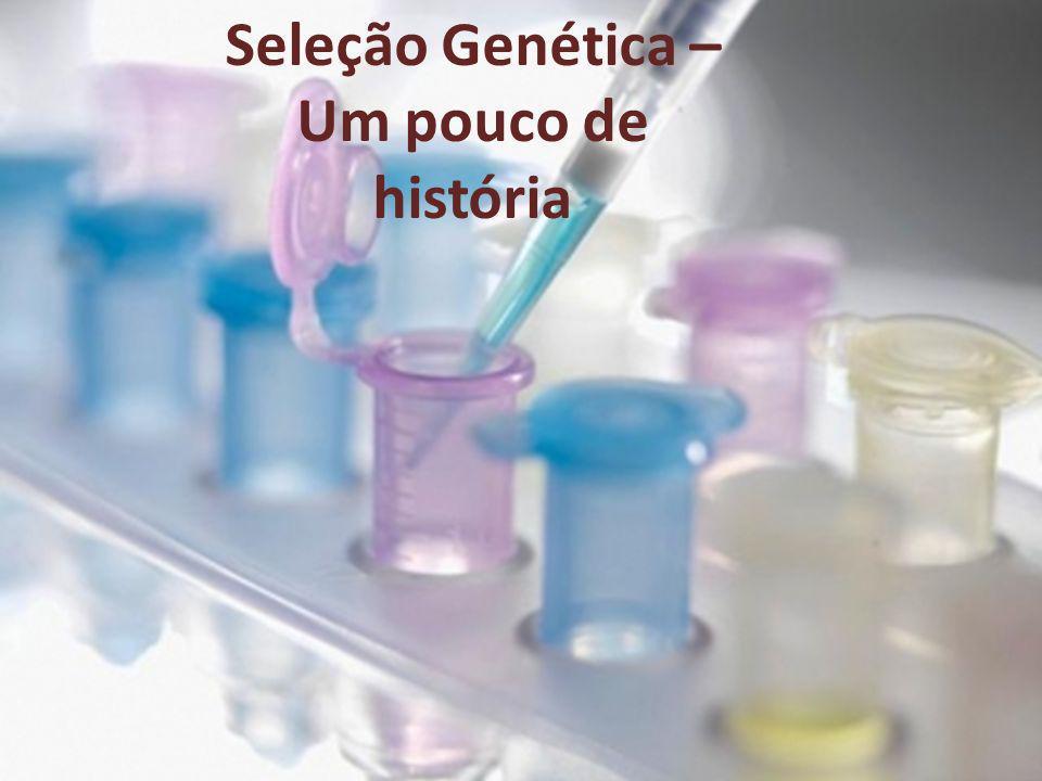 Seleção Genética – Um pouco de história