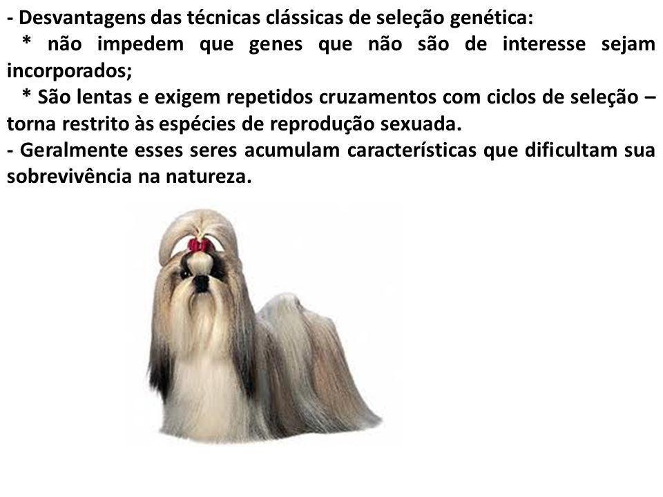 - Desvantagens das técnicas clássicas de seleção genética: