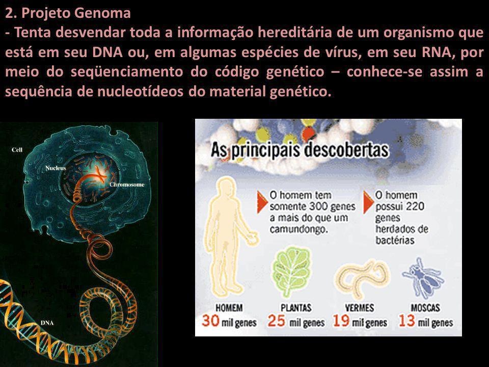 2. Projeto Genoma