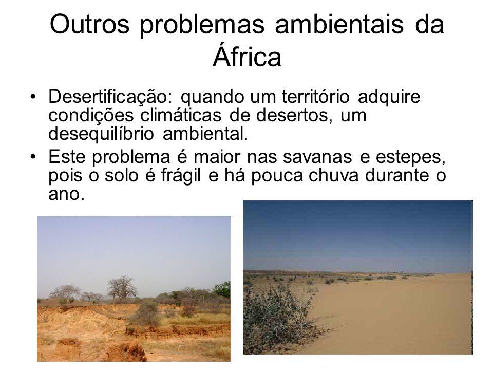 Outros problemas ambientais da África