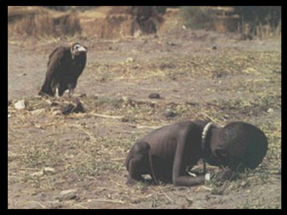 A fome no Mundo fez e faz mais vítimas do que todas as guerras juntas.