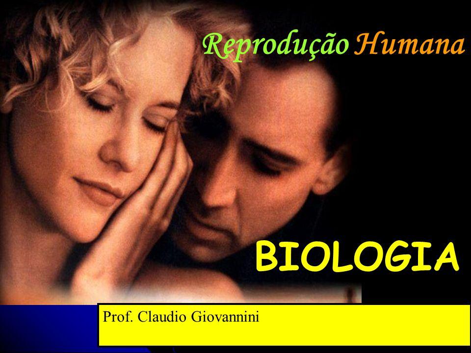 Reprodução Humana BIOLOGIA Prof. Claudio Giovannini