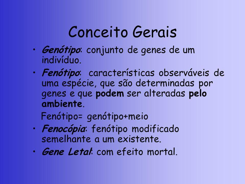 Conceito Gerais Genótipo: conjunto de genes de um indivíduo.