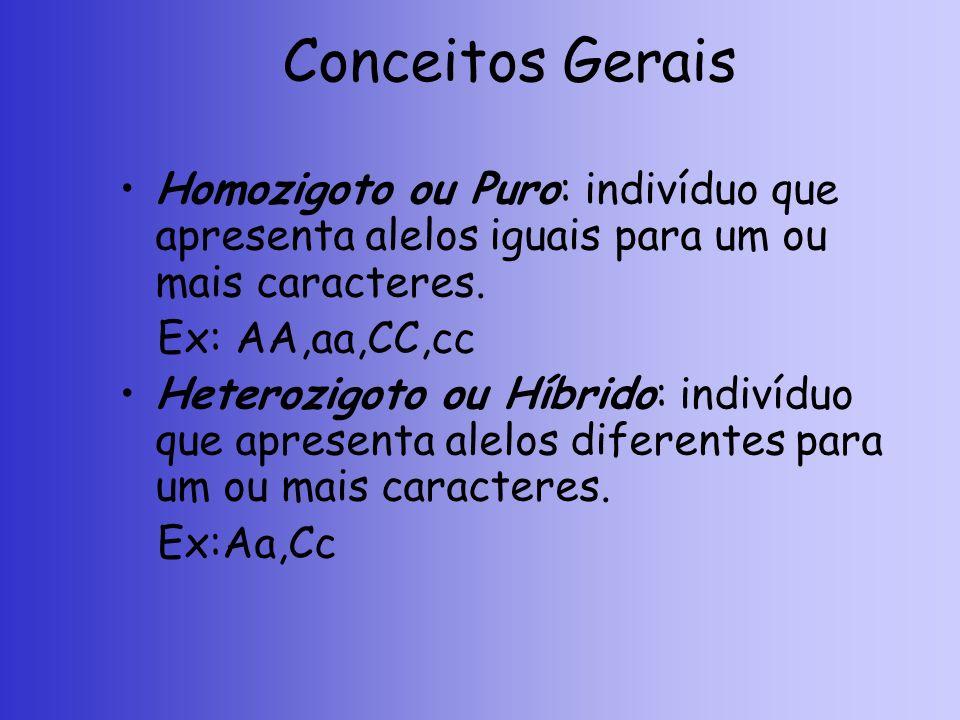Conceitos Gerais Homozigoto ou Puro: indivíduo que apresenta alelos iguais para um ou mais caracteres.