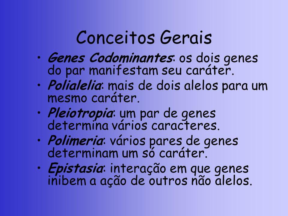 Conceitos Gerais Genes Codominantes: os dois genes do par manifestam seu caráter. Polialelia: mais de dois alelos para um mesmo caráter.