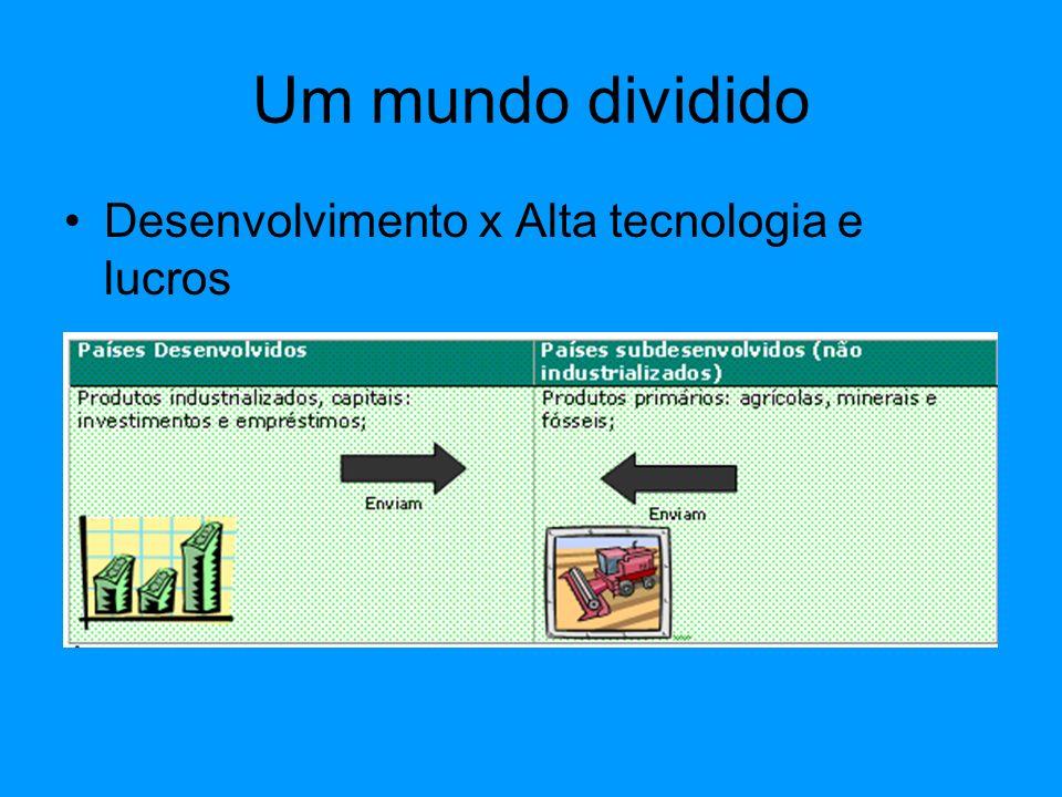 Um mundo dividido Desenvolvimento x Alta tecnologia e lucros