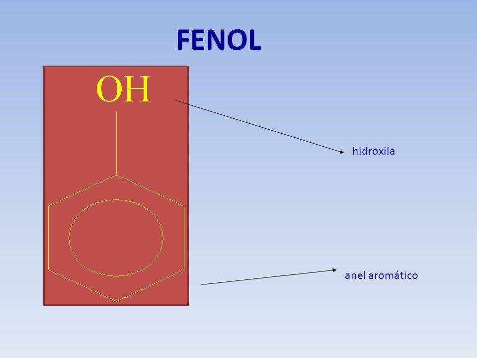 FENOL hidroxila anel aromático